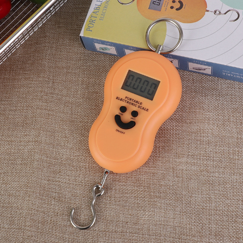 Mini Fishing Weighing Hanging Weighing Electronic Scale K-1